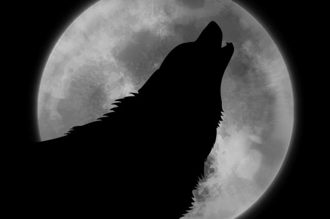 Full wolf moon to appear on Friday night - and you could see a lunar eclipse