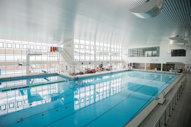 Courses and discounted swimming in Chelmsford for half term