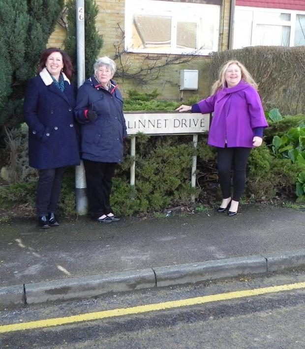 Chelmsford Weekly News: Cllrs Linda Mascot, Freda Mountain and Jude Deakin inspecting the yellow line along Linnet Drive