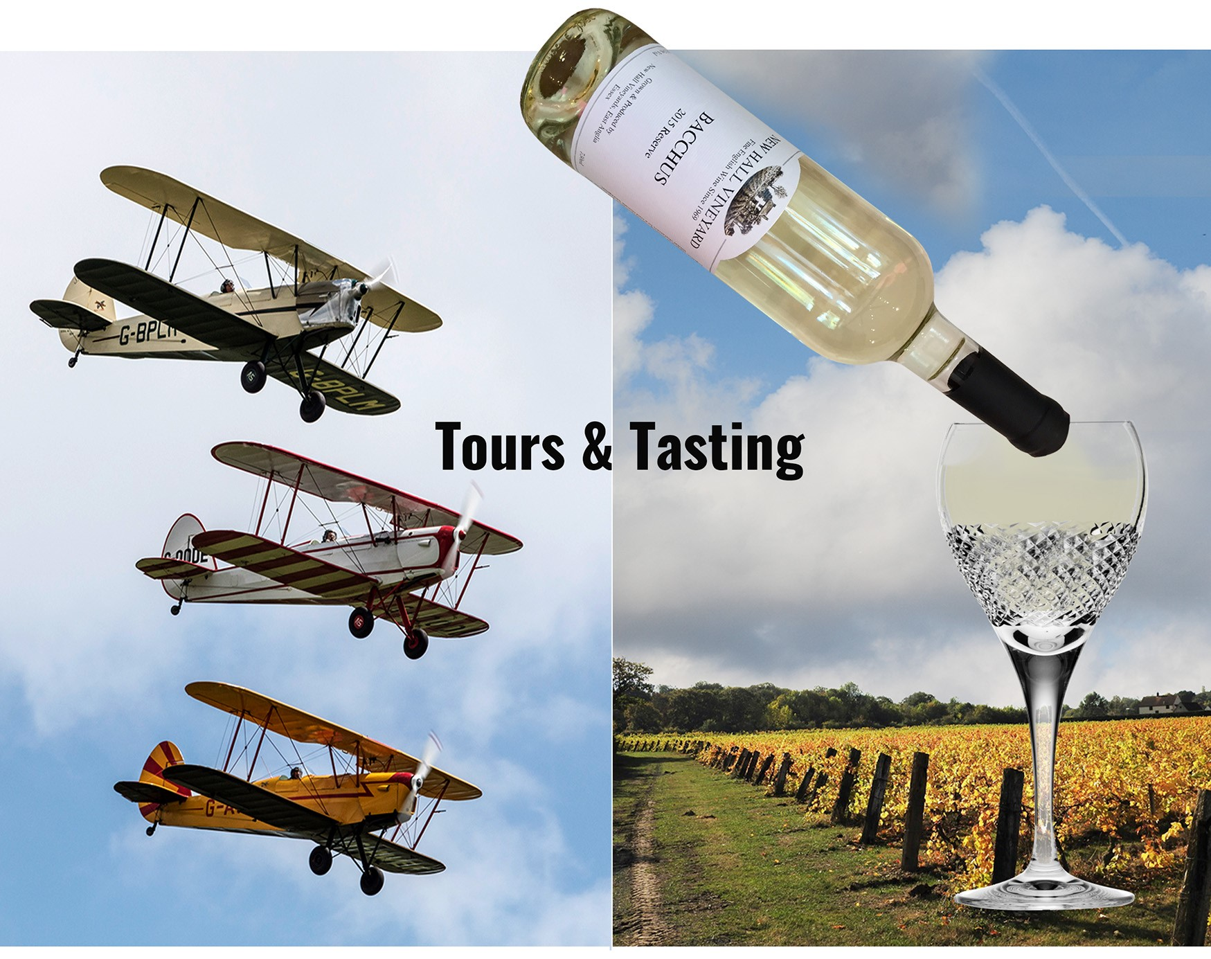 Wings and Wine Tours