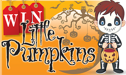 Chelmsford Weekly News: Little pumpkins artwork