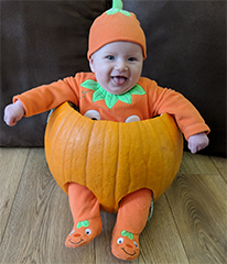 Chelmsford Weekly News: Little Pumpkin Pic 1 Dotty Burns